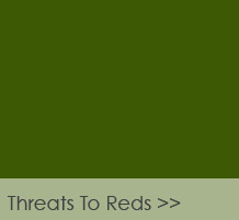 Threats to Reds