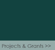 projects & Grants